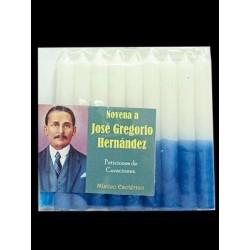 NOVENARIO A JOSE GREGORIO HERNANDEZ.jpg